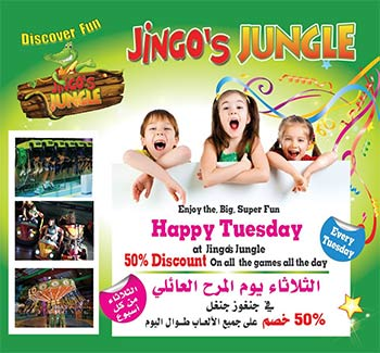 jingos-tuesday-offer