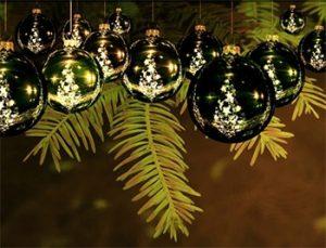 tree-lighting-rotana