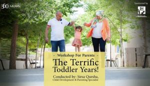 the-terrific-toddler-years