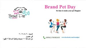 brand-pet-day