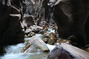 trip-to-mujib-biosphere-reserve